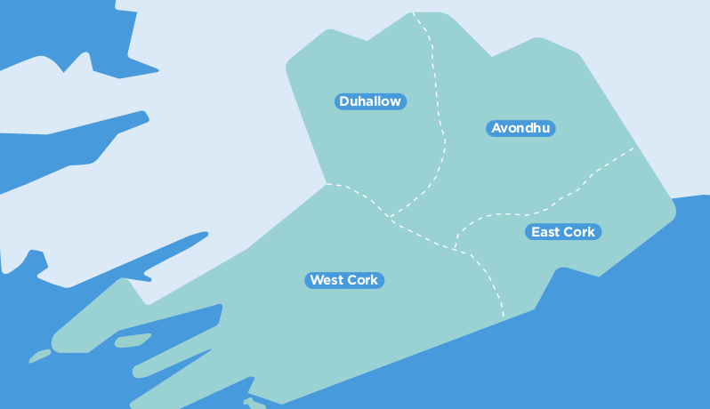 Cork TFI Local Link Bus Services Map